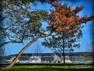 Photograph - Plymouth Harbor In Autumn by Joan  Minchak