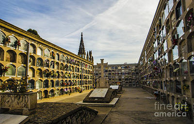 Barcelona Photograph - Poblenou Vaults by Deborah Smolinske