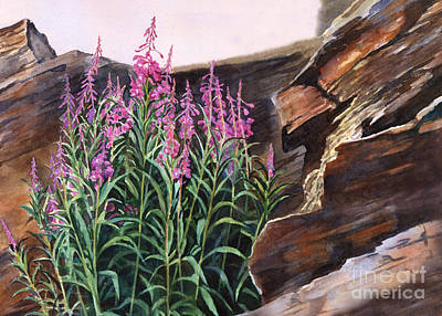 Fireweed Painting - Pocket Of Color by Sharon Freeman