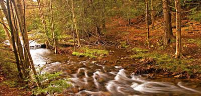 Pocono Mountain Stream Pennsylvania Art Print by A Gurmankin