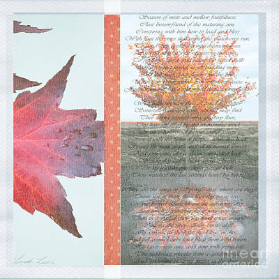 Photograph - Poetry Of Autumn by Linda Lees