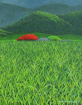 Painting - Poinciana Tree Sugar Cane Farm Australia by David Clode