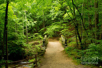 Photograph - Poinsett Bridge 1 by Sandra Clark