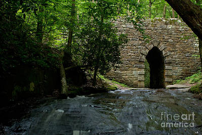 Photograph - Poinsett Bridge 1820 by Sandra Clark