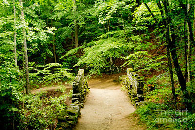 Photograph - Poinsett Bridge 2 by Sandra Clark