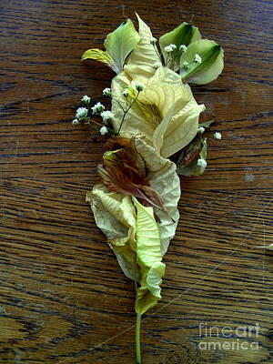 Mixed Media - Poinsettia Leaf Corsage by Nancy Kane Chapman
