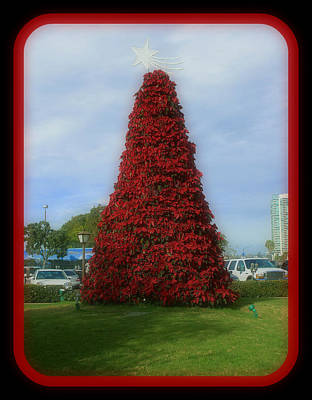 Digital Art - Poinsettia Christmas Tree  by Holley Jacobs