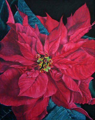Painting - Poinsettia II Painting by Marna Edwards Flavell