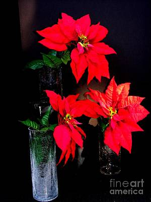 Photograph - Poinsettias And Crystal by Jacqueline M Lewis
