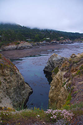Photograph - Point Lobos 5096 by Tom Kelly