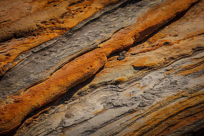 Lucille Ball Royalty Free Images - Point Lobos Abstract 18 Royalty-Free Image by Mike Penney