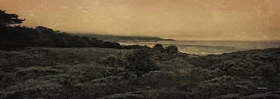 Point Lobos - An Antique Take Art Print by Angela A Stanton