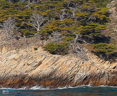 Photograph - Point Lobos Cypress Grove by Jim Pavelle