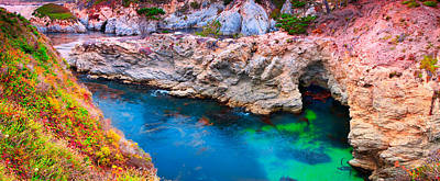 Photograph - Point Lobos  by Emmanuel Panagiotakis