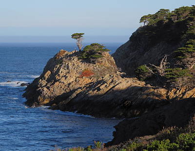 Photograph - Point Lobos In The Morning by Derek Dean