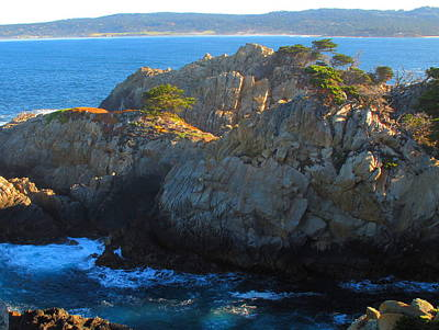 Photograph - Point Lobos Number 9 by Derek Dean