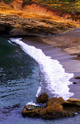 Point Lobos Print by Ron Regalado