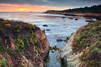 Photograph - Point Lobos State Reserve 3 by Emmanuel Panagiotakis