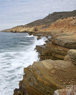 Photograph - Point Loma Cliffs by Carol  Bradley