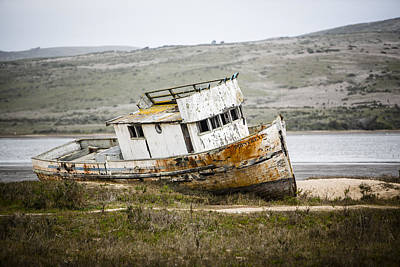 Photograph - Point Reyes by Dave Cleaveland