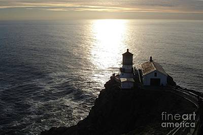 Photograph - Point Reyes Lighthouse by Carol Groenen