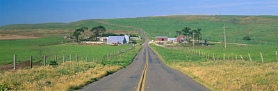 Point Reyes Photograph - Point Reyes National Seashore by Panoramic Images