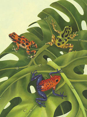 Tree Frogs Painting - Poison Pals by Laura Regan