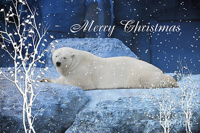 Polar Bear Christmas Greeting Art Print