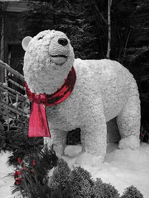 Pyrography - Polar Bear Made Of Mums by Karin Thue