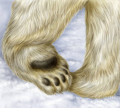 Photograph - Polar Bear Paw by Laurie OKeefe