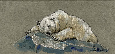 Polar Wall Art - Painting - Polar Bear Sleeping by Juan  Bosco