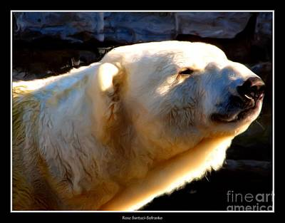 New York Photograph - Polar Bear With Oil Painting Effect by Rose Santuci-Sofranko