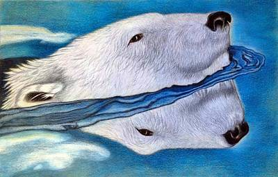 Drawing - Polar Dip by Jo Prevost