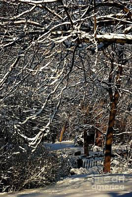 Frank J Casella Royalty-Free and Rights-Managed Images - Polar Vortex Beauty by Frank J Casella