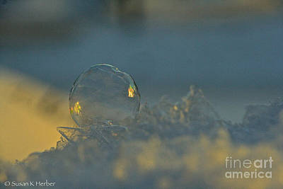 Photograph - Polar Vortex Sunrise by Susan Herber