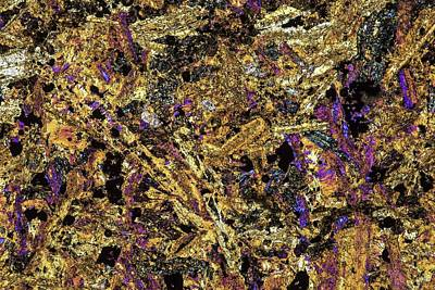 Thin Section Photograph - Polarised Lm Of Thin Section Of Gabbro by Alfred Pasieka
