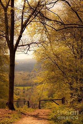 pole fence at top of picturesque view of Steep from Ashford Hang Art Print