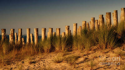 Photograph - Poles In The Sand Dunes At Sunset by Nick  Biemans