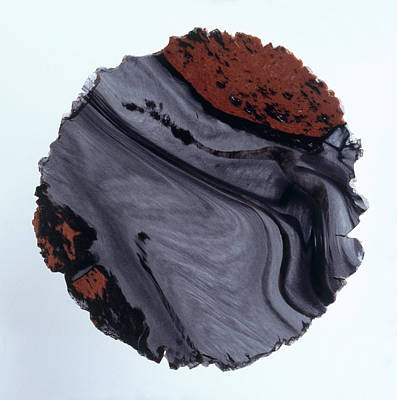 Single Object Photograph - Polished Obsidian by Dorling Kindersley/uig