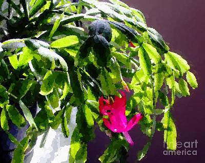 Polka Dot Easter Cactus Art Print by Barbara Griffin