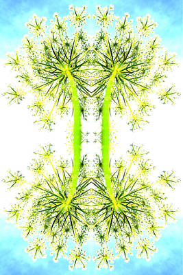 Pollen Play Art Print by James Whitworth