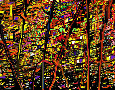 Digital Art - Pollock Revised by Ian  MacDonald