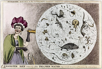 Microscopic Painting - Pollution Cartoon, C1828 by Granger