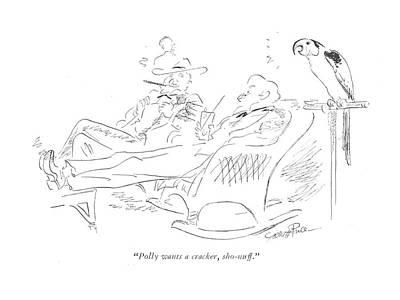 Parakeet Drawing - Polly Wants A Cracker by Garrett Price