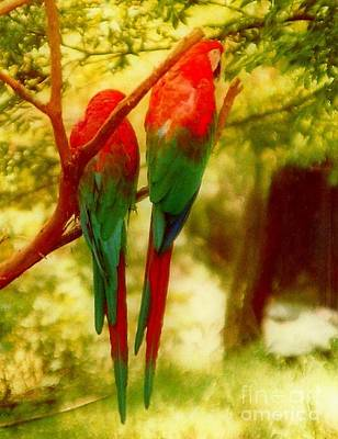 New Orleans Polly Wants Two Crackers At New Orleans Louisiana Zoological Gardens  Print by Michael Hoard