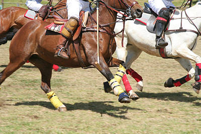 Photograph - Polo Ponies At Speed by John Orsbun