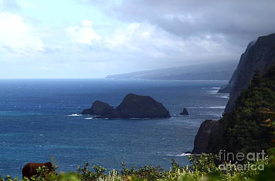 Photograph - Pololu Valley 1 by Theresa Ramos-DuVon