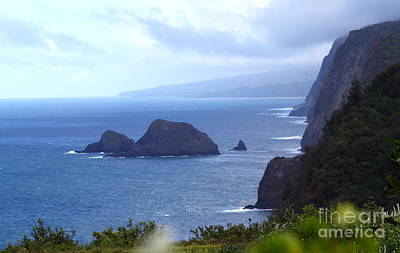 Photograph - Pololu Valley 2 by Theresa Ramos-DuVon