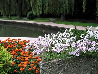 Photograph - Polson Park Pond by Will Borden