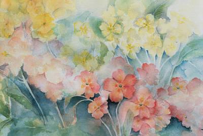 Soft Pastel Painting - Polyanthus, Mixed Hybrids by Karen Armitage